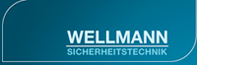 wellmann_log_01