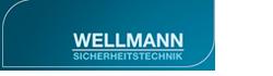 wellmann_log_01